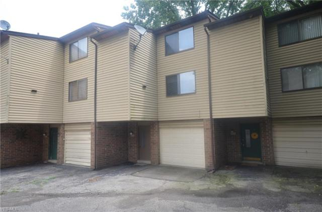 2153 Penguin Avenue, Akron, OH 44319 (MLS #4116893) :: RE/MAX Edge Realty