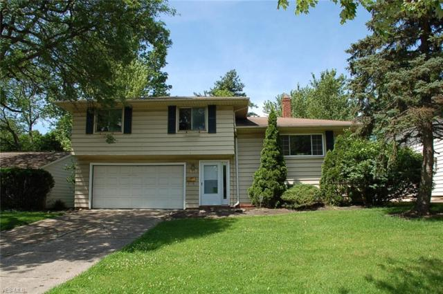 4633 Telhurst Road, South Euclid, OH 44121 (MLS #4117040) :: RE/MAX Trends Realty
