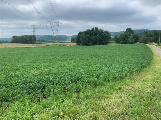 State Rd 518, Lisbon, OH 44432 (MLS #4117145) :: RE/MAX Valley Real Estate