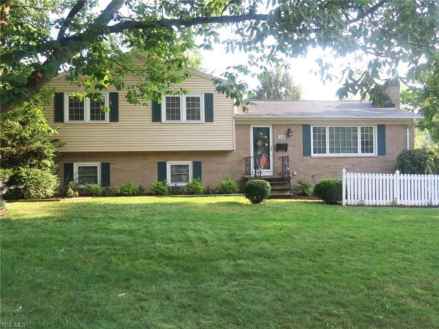 234 Brouse Drive, Wadsworth, OH 44281 (MLS #4117289) :: RE/MAX Edge Realty