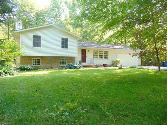 6038 State Route 82, Hiram, OH 44234 (MLS #4117465) :: RE/MAX Edge Realty