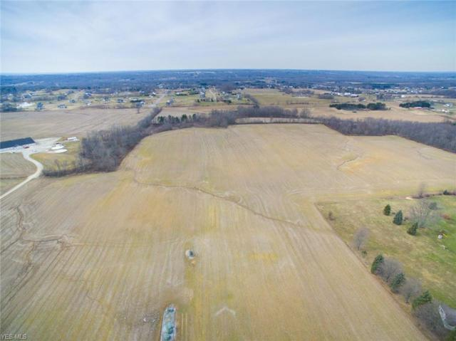 7400 Beach Road, Wadsworth, OH 44281 (MLS #4117582) :: RE/MAX Valley Real Estate