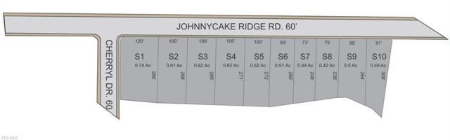 11026 Johnnycake Ridge Parcel 3, Painesville Township, OH 44077 (MLS #4118999) :: The Crockett Team, Howard Hanna