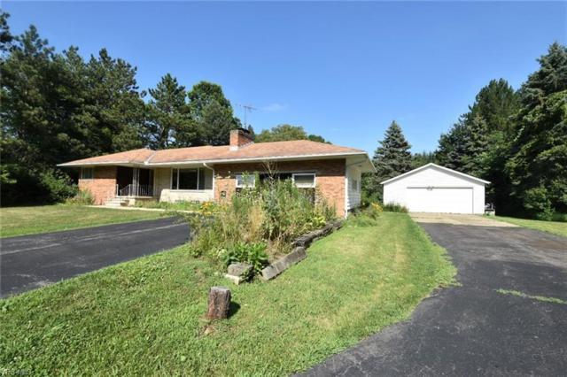 3685 Stoney Ridge Road, Avon, OH 44011 (MLS #4119352) :: RE/MAX Valley Real Estate