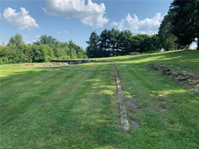 Plaza Dr, Calcutta, OH 43920 (MLS #4119741) :: RE/MAX Trends Realty