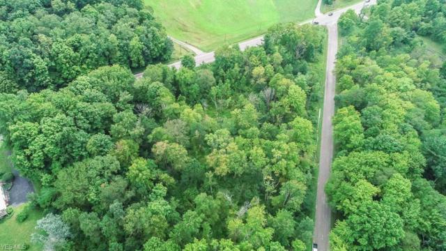 13445 Colony Lane, Burton, OH 44021 (MLS #4119753) :: The Crockett Team, Howard Hanna
