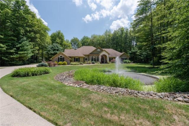 2816 Remington Point, Aurora, OH 44202 (MLS #4119786) :: The Crockett Team, Howard Hanna
