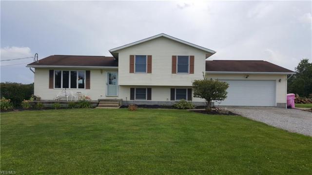 5450 Davis Peck Road, Farmdale, OH 44417 (MLS #4120386) :: The Crockett Team, Howard Hanna