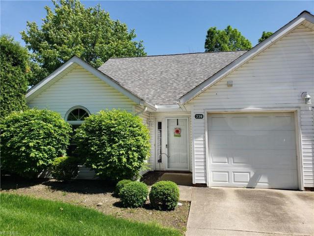 228 Harbor Ridge Lane, Fairport Harbor, OH 44077 (MLS #4120680) :: RE/MAX Edge Realty