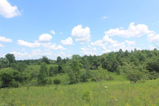 Union Hill Road, Blue Rock, OH 43720 (MLS #4120901) :: RE/MAX Valley Real Estate