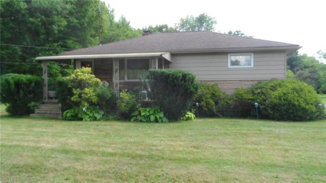 4155 Selkirk Bush Road, Newton Falls, OH 44444 (MLS #4121049) :: The Crockett Team, Howard Hanna