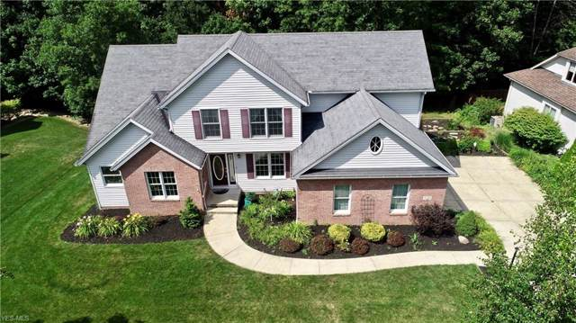 1233 Ty Drive, Medina, OH 44256 (MLS #4121139) :: RE/MAX Trends Realty