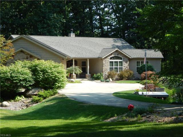 10907 Darrow Road, Vermilion, OH 44089 (MLS #4121665) :: RE/MAX Valley Real Estate