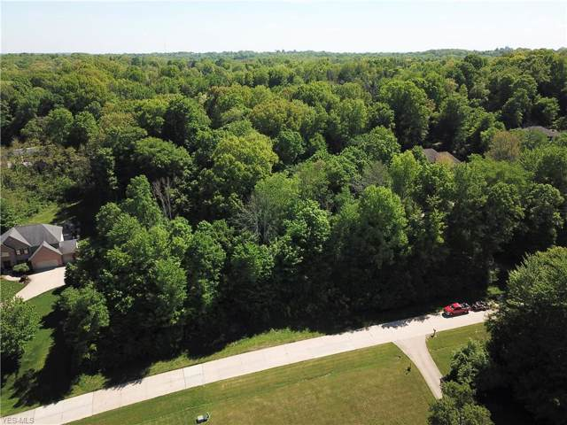 Wilhite Drive, Wadsworth, OH 44281 (MLS #4123581) :: Keller Williams Chervenic Realty