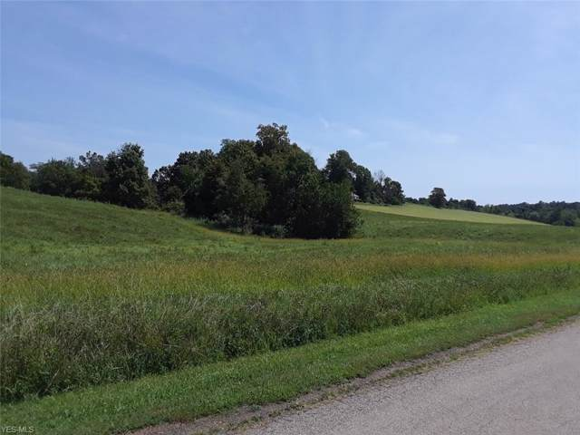 N Fred Mummey Road NE, McConnelsville, OH 43756 (MLS #4124060) :: RE/MAX Valley Real Estate