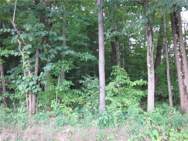 V/L Unger Road Tract A, Atwater, OH 44201 (MLS #4124592) :: RE/MAX Trends Realty