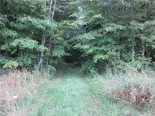 V/L Unger Road Tract C, Atwater, OH 44201 (MLS #4124610) :: RE/MAX Valley Real Estate