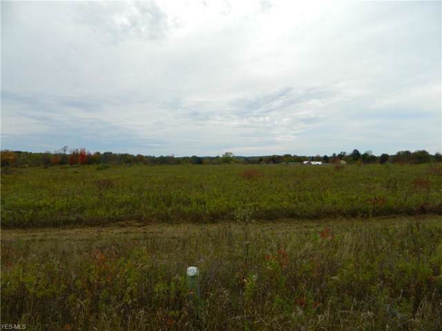 Brosius Road Vacant Land, Garrettsville, OH 44231 (MLS #4124704) :: The Holden Agency