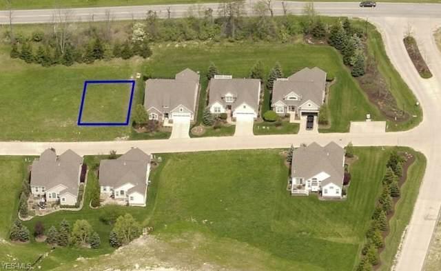 Falcon Ridge Drive, Medina, OH 44256 (MLS #4125009) :: The Holden Agency