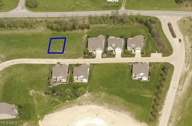 Falcon Ridge Drive, Medina, OH 44256 (MLS #4125035) :: Keller Williams Chervenic Realty