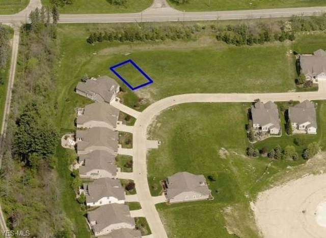 Falcon Ridge Drive, Medina, OH 44256 (MLS #4125146) :: The Holly Ritchie Team