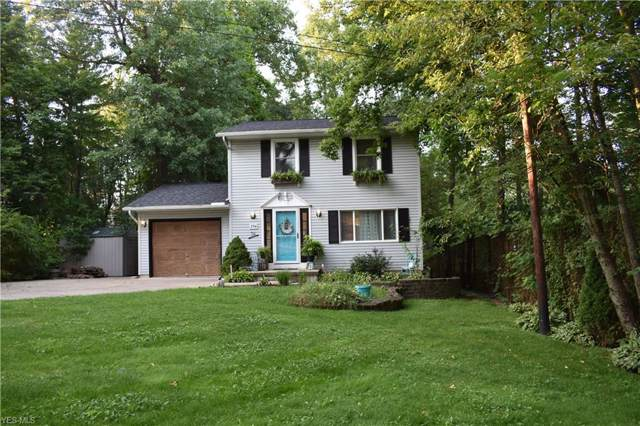 254 Virginia Avenue, Wadsworth, OH 44281 (MLS #4125202) :: The Crockett Team, Howard Hanna