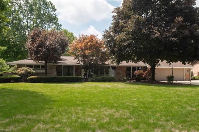 1388 Saint Albans Drive, Youngstown, OH 44511 (MLS #4125908) :: The Crockett Team, Howard Hanna