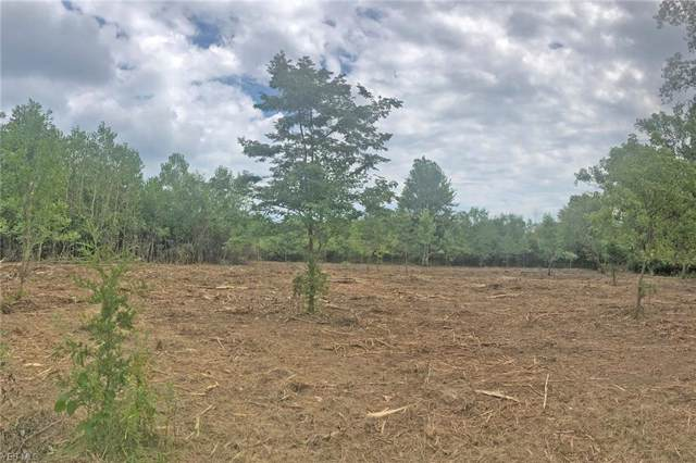 Lot 8 Pheasant Lane, Kelleys Island, OH 43438 (MLS #4125928) :: The Crockett Team, Howard Hanna