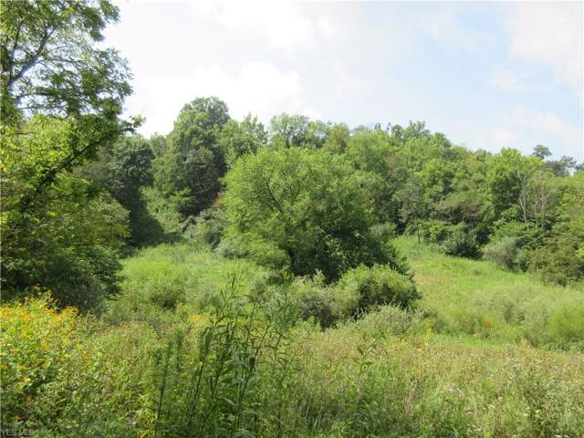 5235 Pounds Road, Chesterhill, OH 45728 (MLS #4126200) :: RE/MAX Above Expectations