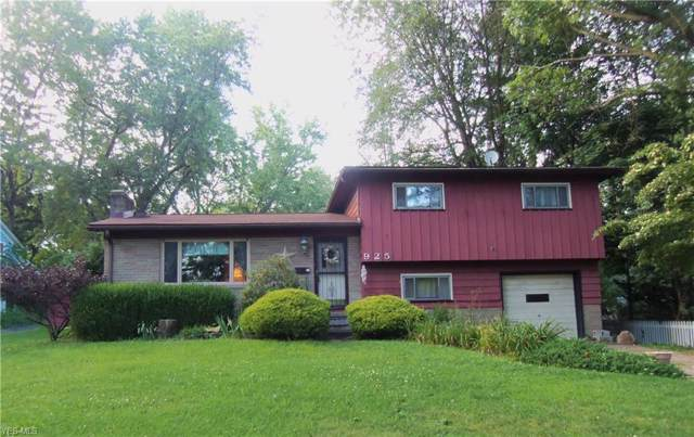 925 E Crain Avenue, Kent, OH 44240 (MLS #4126731) :: Keller Williams Chervenic Realty