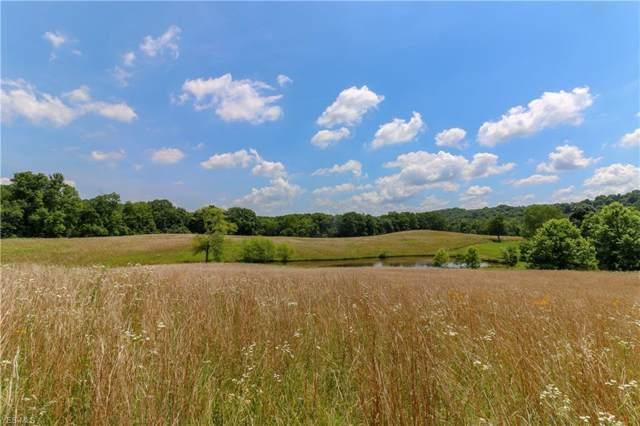 11655 Rural Dale Road, Chandlersville, OH 43727 (MLS #4128106) :: The Crockett Team, Howard Hanna