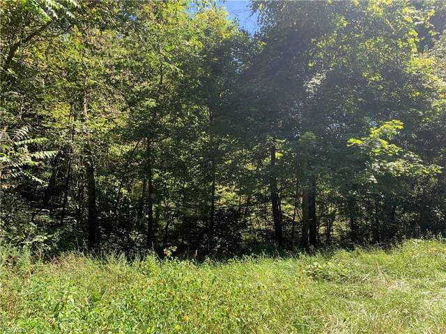 Porter Run Road, Roseville, OH 43777 (MLS #4130798) :: RE/MAX Trends Realty