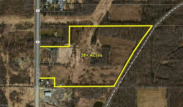 State Route 45, Lordstown, OH 44481 (MLS #4131413) :: The Crockett Team, Howard Hanna