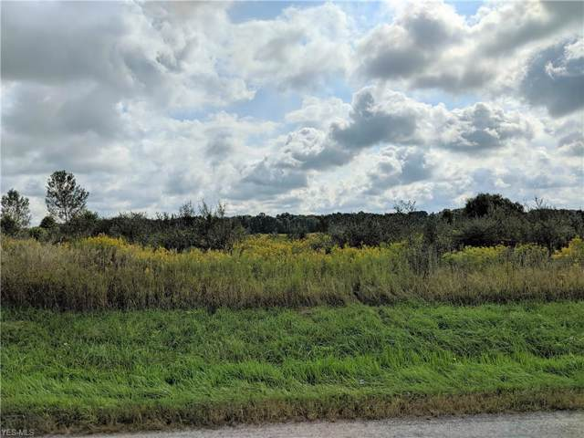 Co. Rd. 681, Sullivan, OH 44880 (MLS #4132012) :: RE/MAX Edge Realty