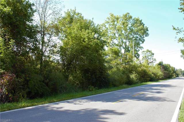 Beach Road, Wadsworth, OH 44281 (MLS #4132631) :: RE/MAX Trends Realty