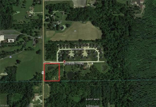 Bluebell Parkway, Medina, OH 44256 (MLS #4133166) :: The Crockett Team, Howard Hanna