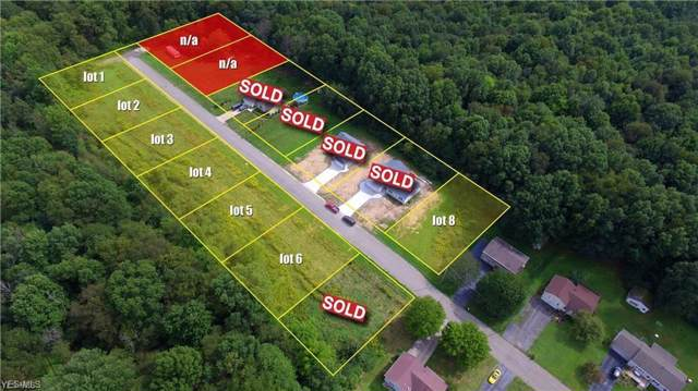 #4 Wilshire Drive, Cortland, OH 44410 (MLS #4134380) :: RE/MAX Valley Real Estate