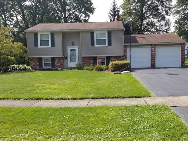 162 Blossom Lane, Niles, OH 44446 (MLS #4134824) :: The Crockett Team, Howard Hanna