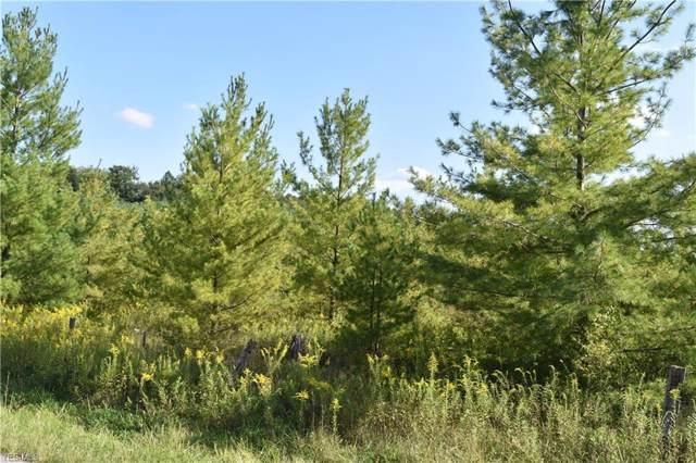 0 Twp Rd 274, St. Clairsville, OH 43950 (MLS #4135155) :: The Crockett Team, Howard Hanna