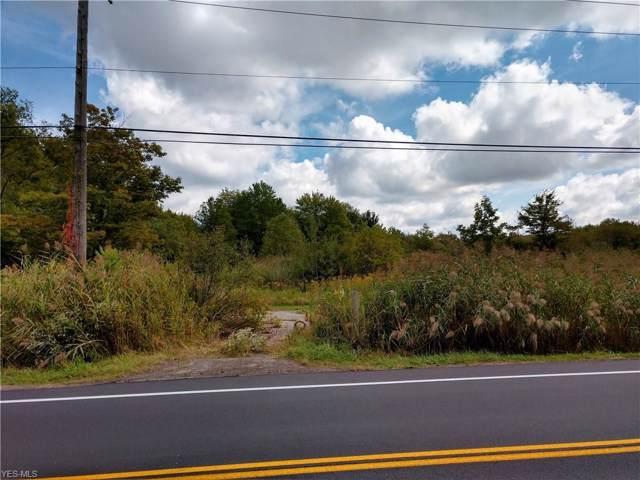 Ravenna Road, Chardon, OH 44024 (MLS #4135397) :: The Art of Real Estate