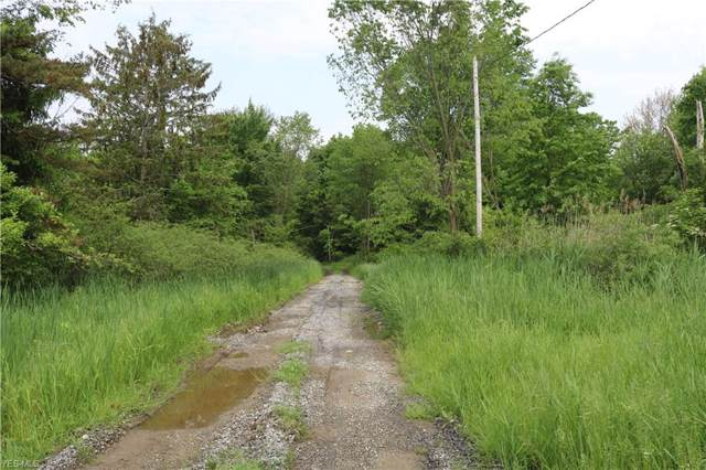 State Route 88, Windham, OH 44288 (MLS #4135638) :: RE/MAX Edge Realty