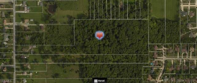 13301 State Road, North Royalton, OH 44133 (MLS #4136274) :: RE/MAX Edge Realty