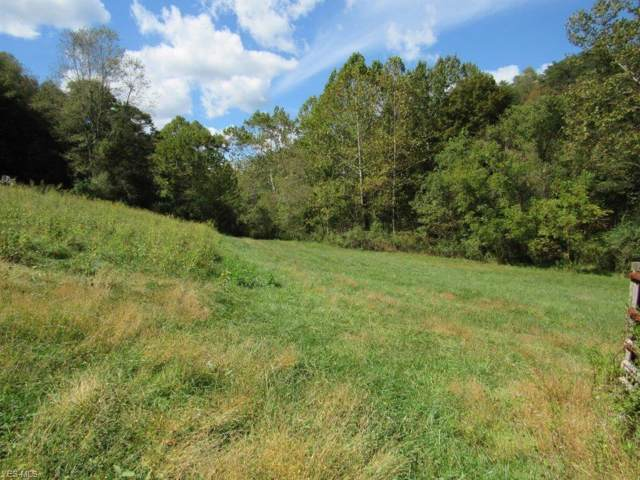 Garfield Road, Palestine, WV 26160 (MLS #4136747) :: The Crockett Team, Howard Hanna
