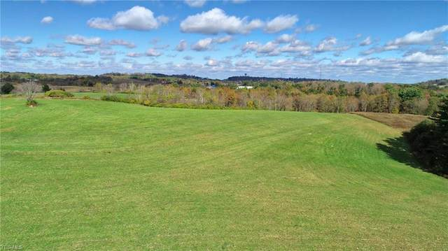 63510 Wintergreen Road, Lore City, OH 43755 (MLS #4142156) :: The Holly Ritchie Team