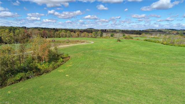 63700 Wintergreen Road, Lore City, OH 43755 (MLS #4142179) :: The Holly Ritchie Team