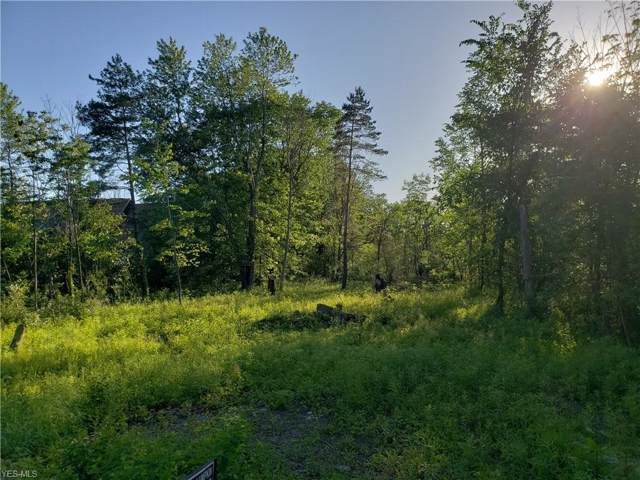Macedonia Road, Oakwood Village, OH 44146 (MLS #4142981) :: The Holly Ritchie Team