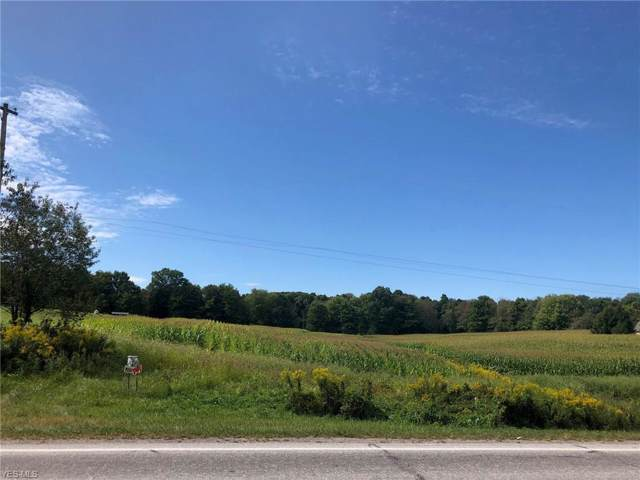State Route 534, Middlefield, OH 44062 (MLS #4143621) :: The Crockett Team, Howard Hanna