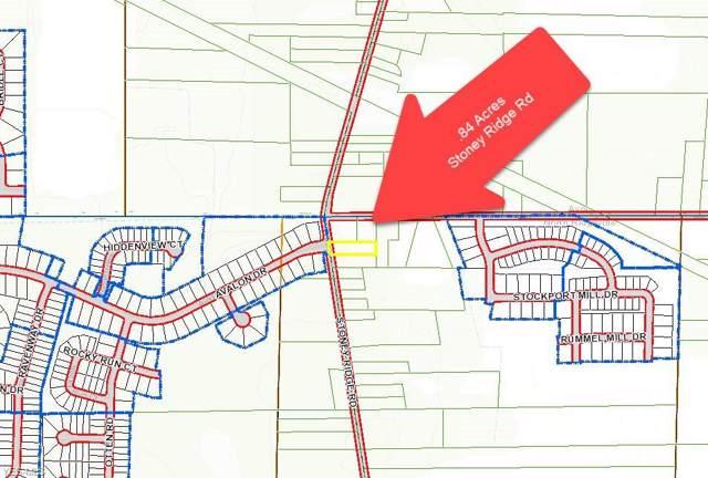 V/L Stoney Ridge Road, North Ridgeville, OH 44039 (MLS #4143917) :: The Holly Ritchie Team