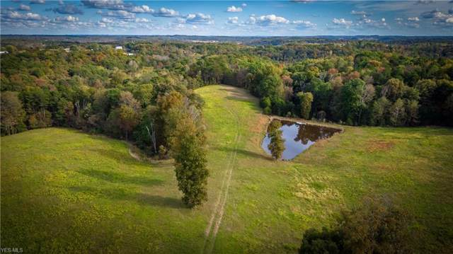 934 Mcgill Road, Vincent, OH 45784 (MLS #4143956) :: RE/MAX Trends Realty