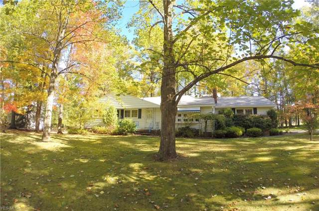 9843 W Alpine Drive, Kirtland, OH 44094 (MLS #4144137) :: RE/MAX Trends Realty